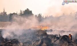 fuego en Valle Nuevo